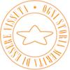 StayAleeve Logo