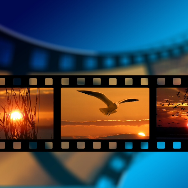 image of film