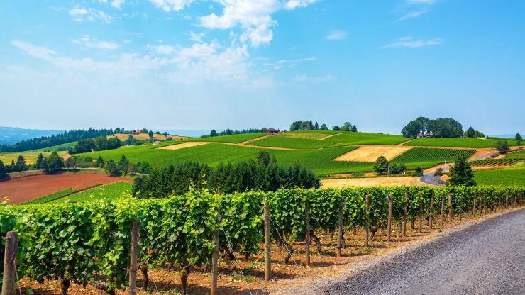 Territorial Highway Wine Trail