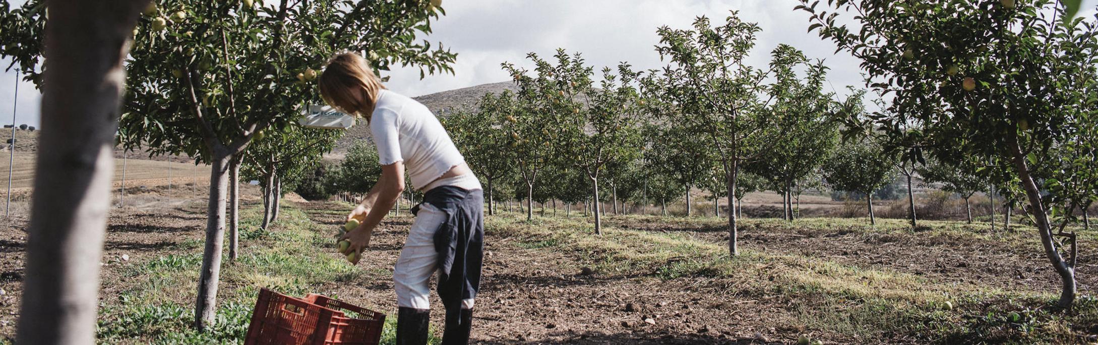 8d73a5a8 0870 4788 8bbf 12a0f1ab7469 - Patagonia lance sa campagne sur l'agriculture biologique régénératrice