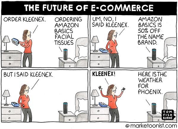 A cartoon of a woman ordering via Alexa