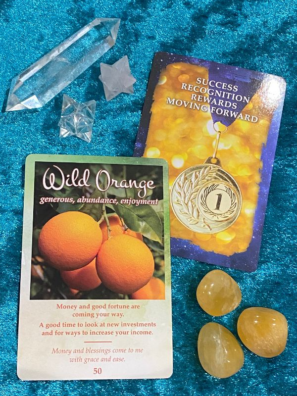Wild Orange card from The Modern Oracle of Essential Oils