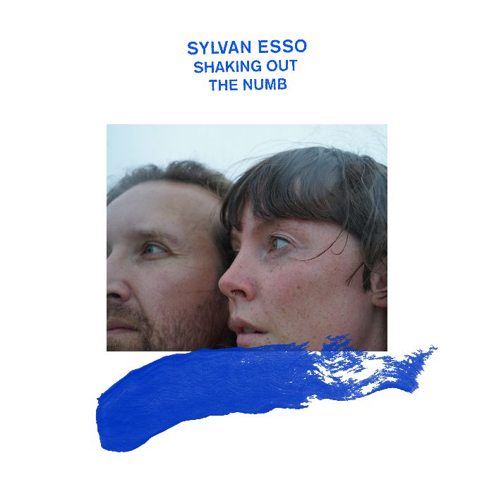 """A white square with the words, """"Sylvan Esso Shaking Out The Numb"""" in blue capital letters centered at the top of the square. A cropped rectangular photo of a white man with a beard and mustache and a white woman with bangs as they look away from the camera is on top of a brushmark of blue."""