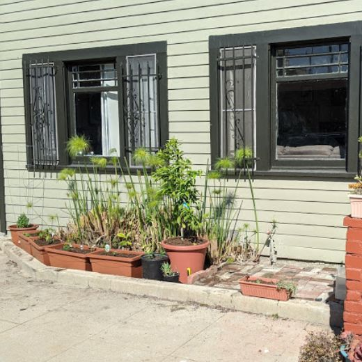 a garden just planted in front of a house with two windows