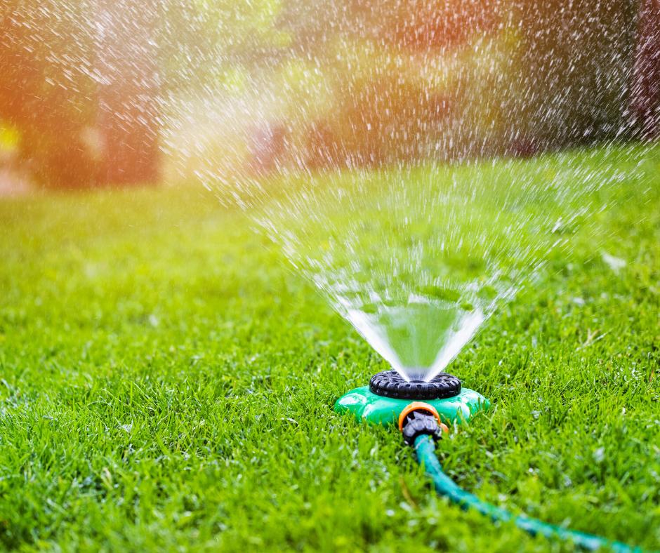 Hose-end sprinkler on bright green grass