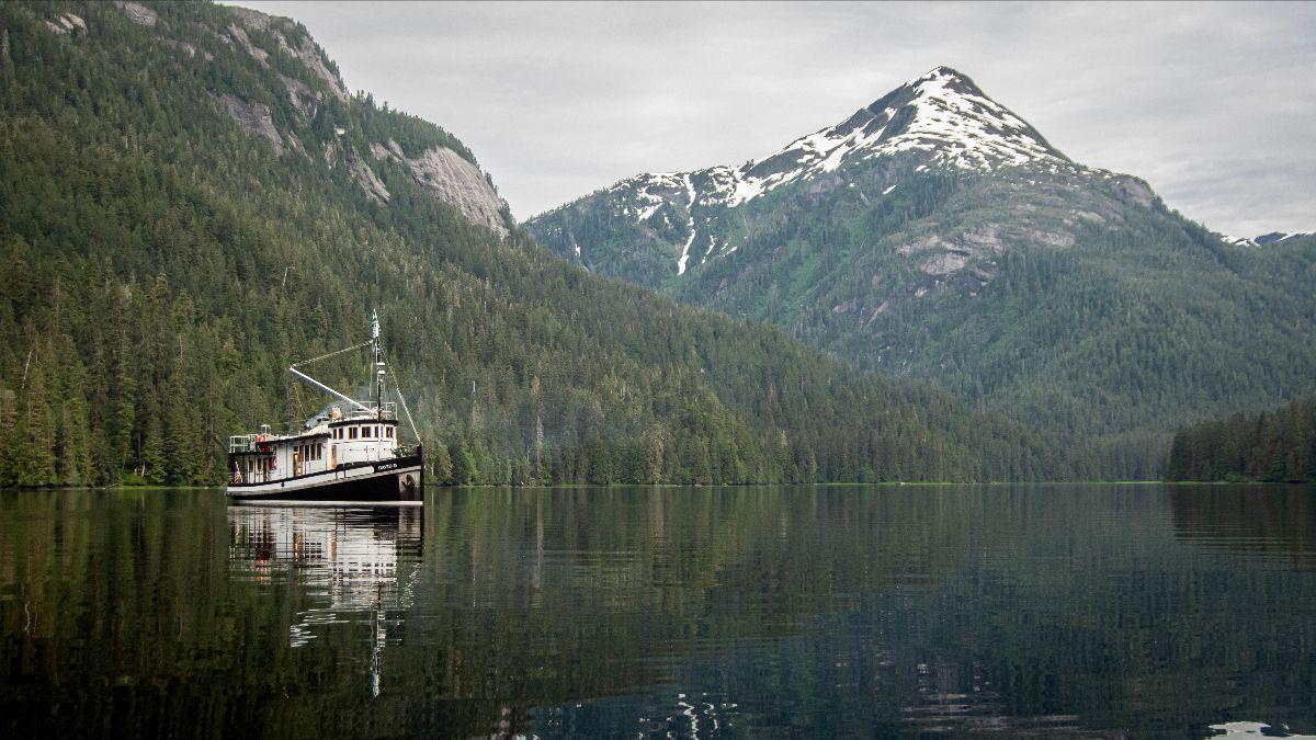 David B in Alaska