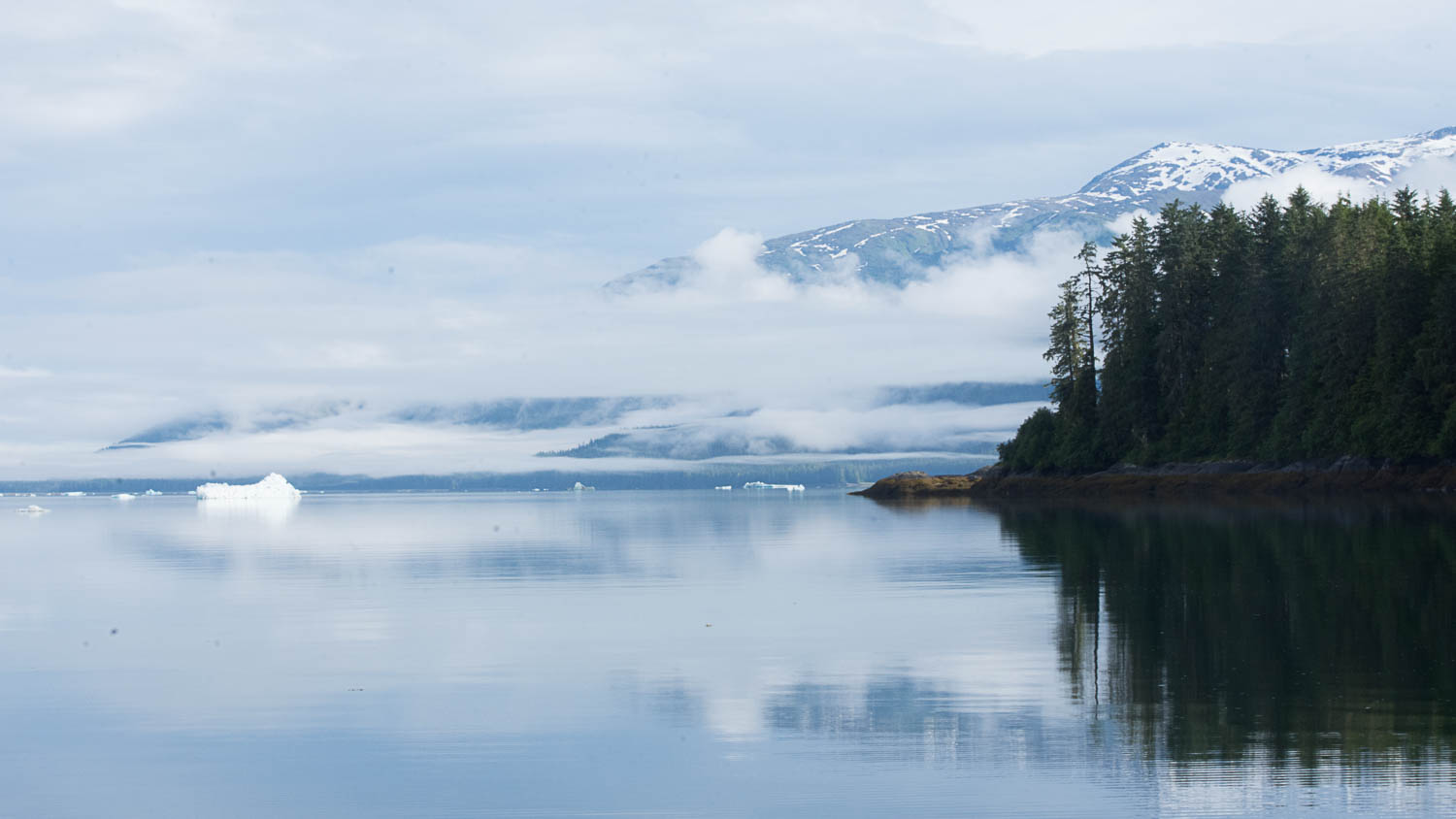 Alaska Fjords Photography Cruise