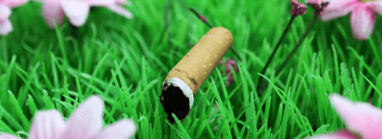 QLD Smoking Near Synthetic Turf