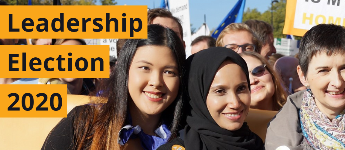 Liberal Democrat Leadership Election - banner image showing party members