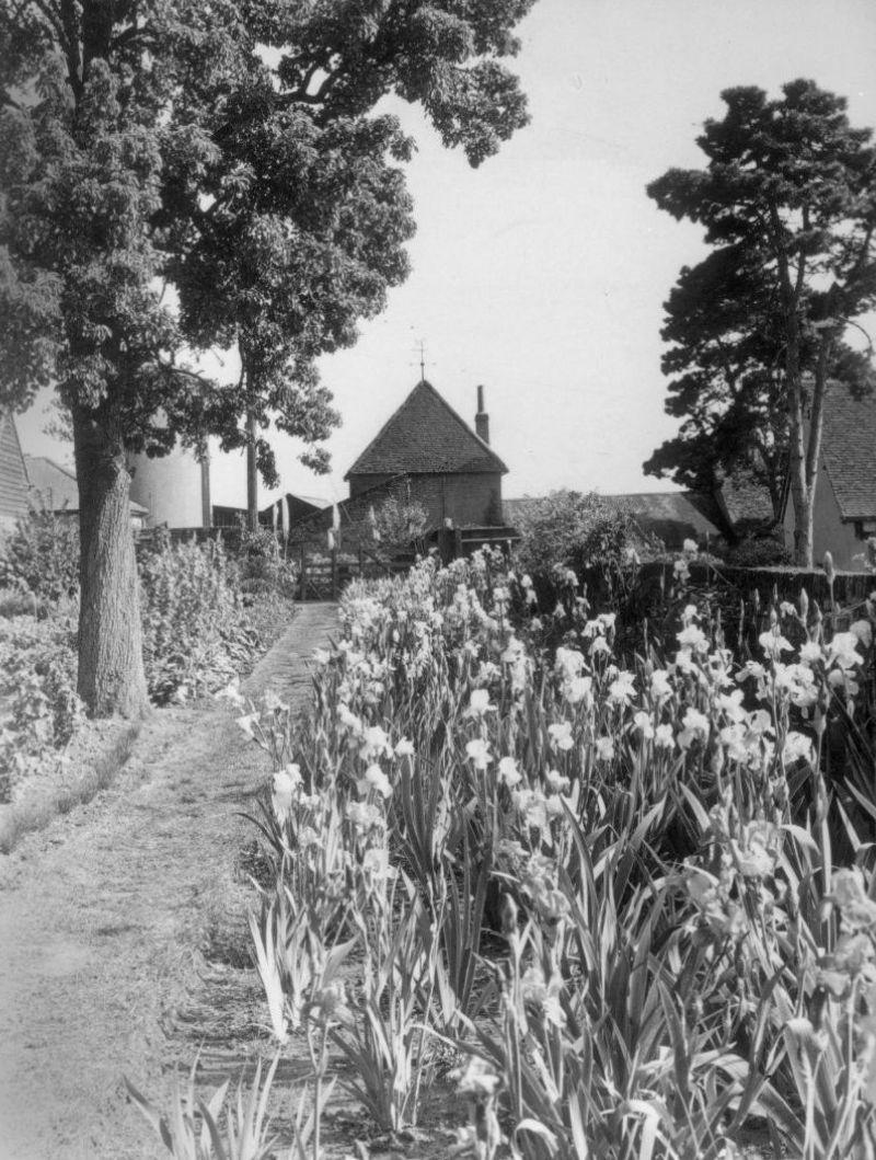 Long path irises BE
