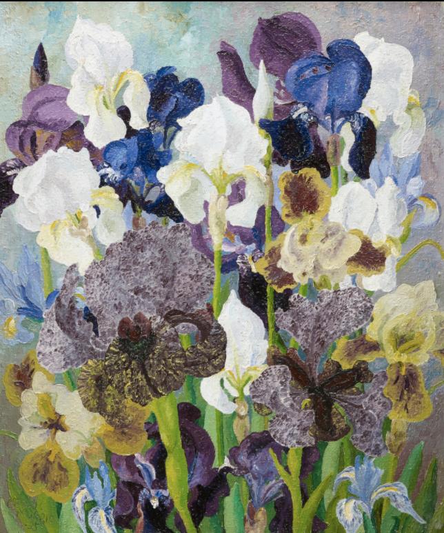 May Flowering Irises No.2