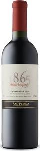 San Pedro 1865 Selected Vineyards Carmenère 2018
