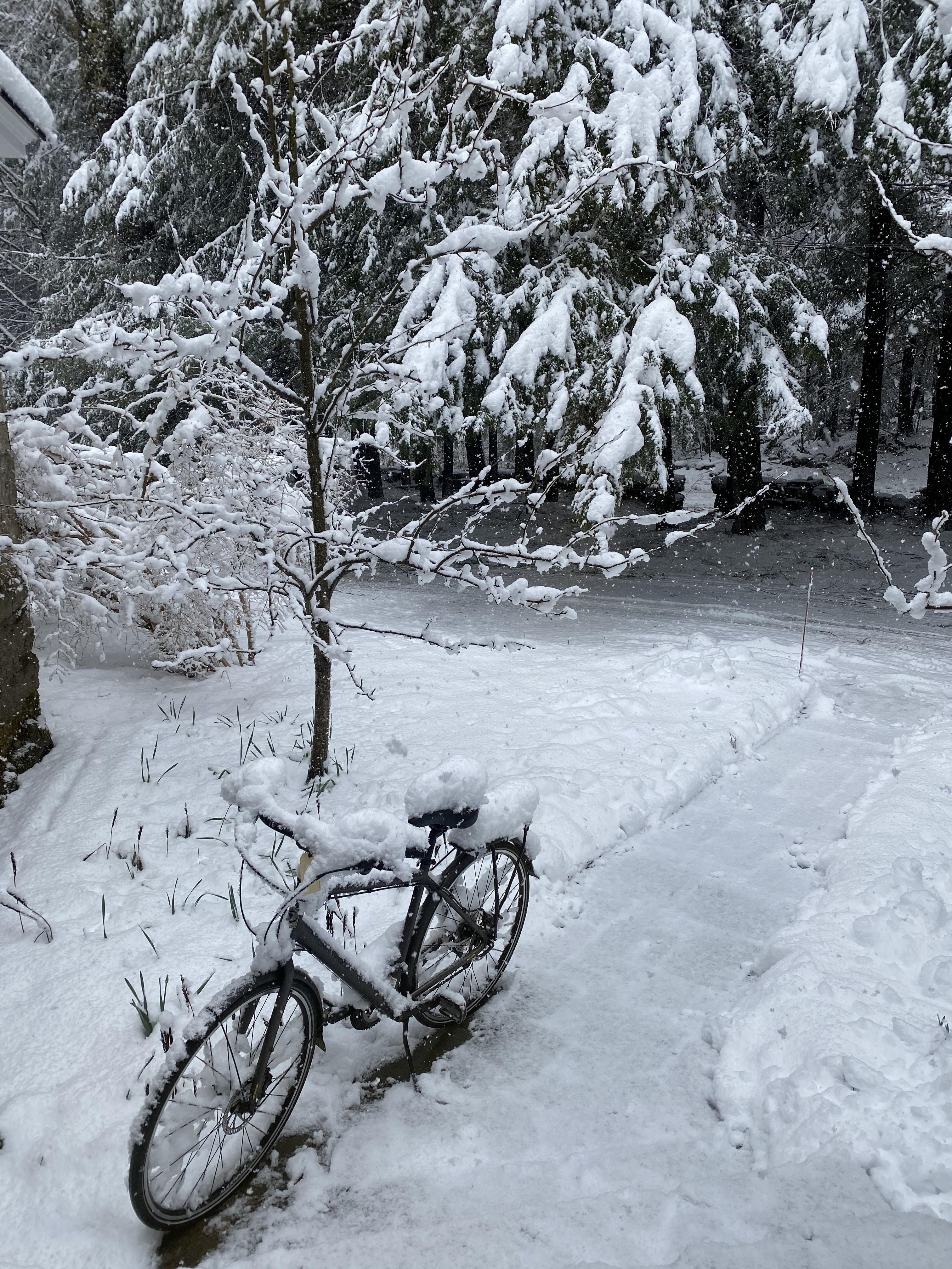 Snowy bike at Macdowell