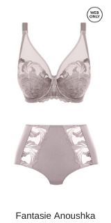 Fantasie lingerie Anoushka full cup bh in silver