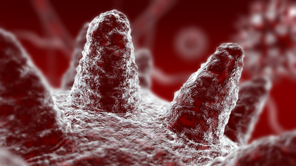 Cleanroom Microbiology 101