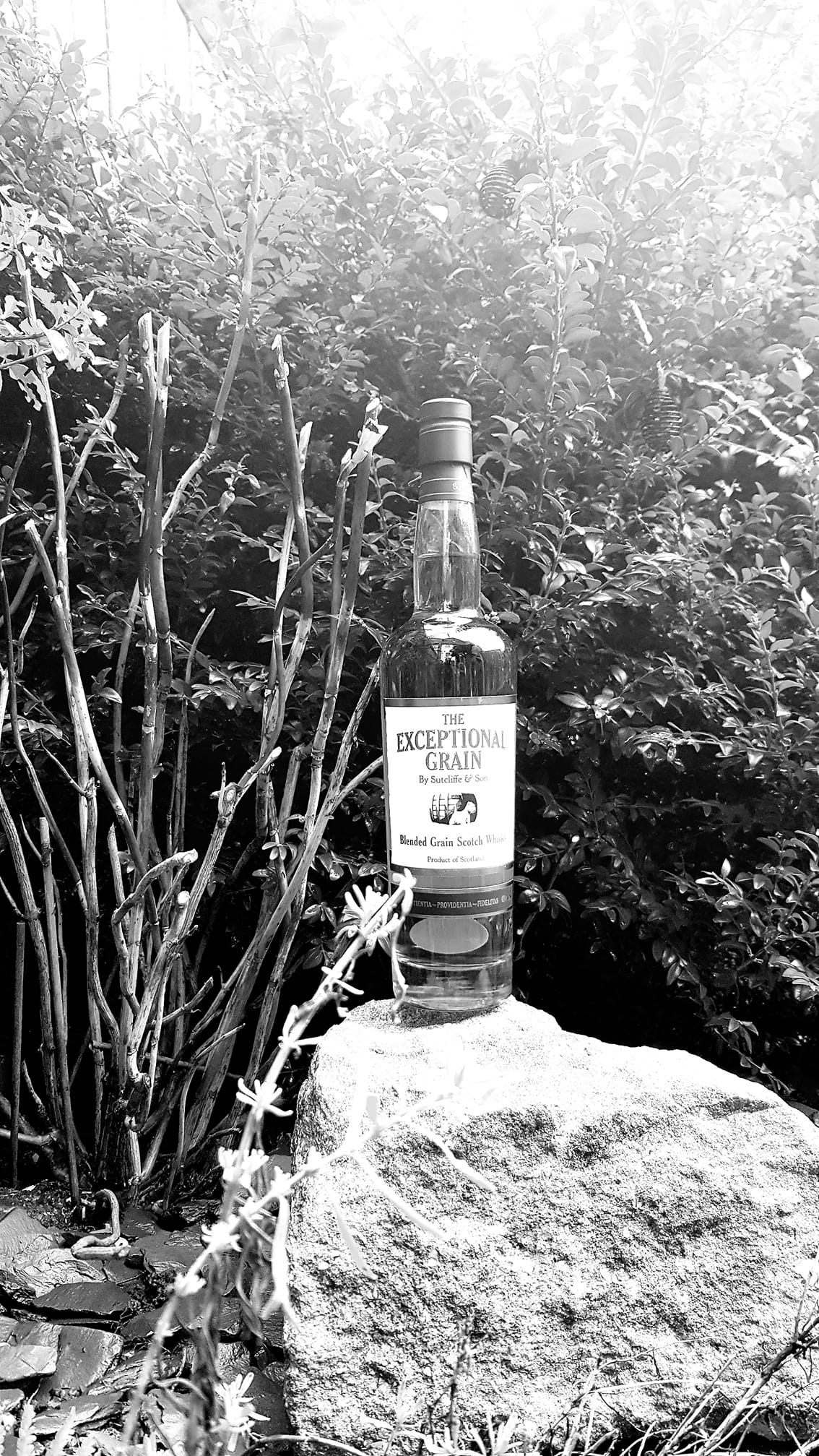 #WHISKYSHOTS WINNERS – THE EXCEPTIONAL, Summerton Whisky Club