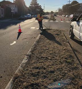 Carlson Blvd Median cleanup