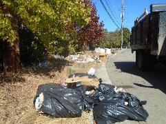 A pile of trash next to a truck    Description automatically generated with low confidence