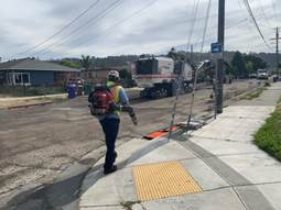 Cleanup Carlos Ave