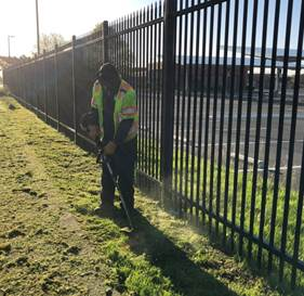 Weed Abatement Cutting ave