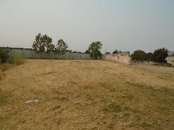 A picture containing grass, sky, outdoor, field    Description automatically generated