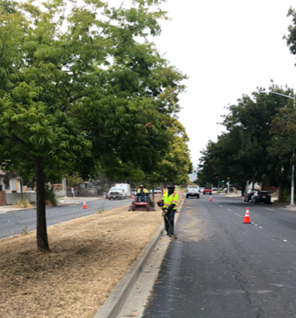 Cutting Ave Weed Abatement
