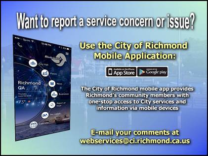 COR Connect Service Concern and Issues 4
