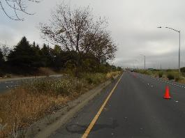 A road with trees on the side    Description automatically generated with low confidence