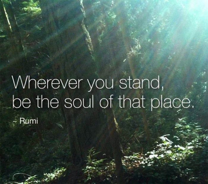 Wherever you stand, be the soul of that place. ~Rumi