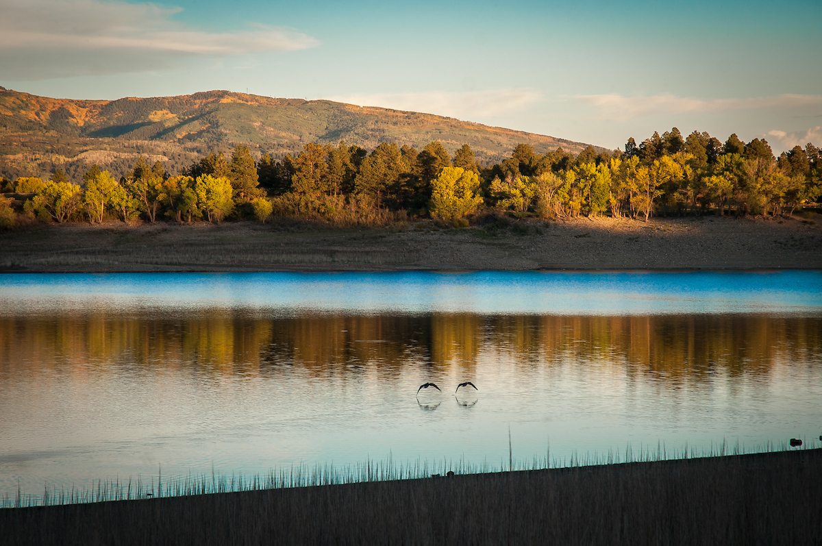 Picture of Mancos State Park, sunset over body of water with two birds flying overhead