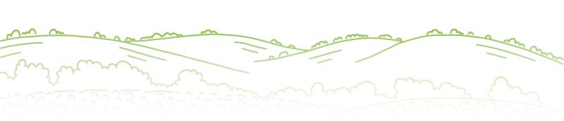 rural hills illustration