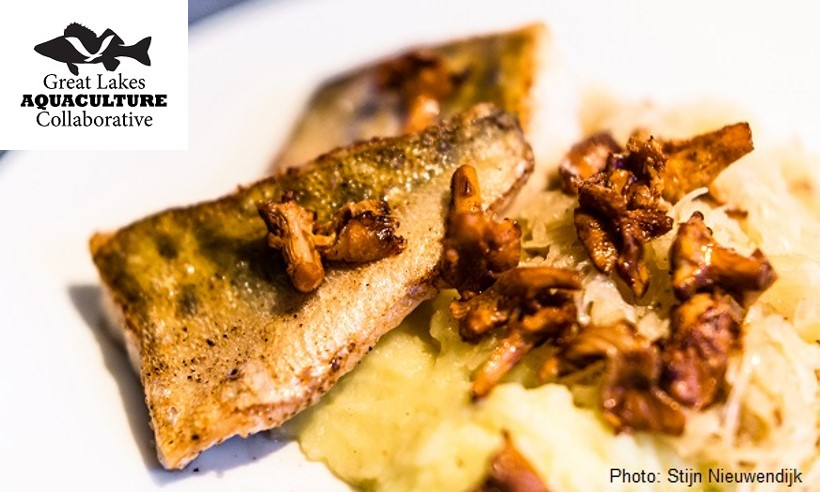 pan fried fish with mushrooms and sauerkraut, with a great lakes aquaculture collaborative logo in the corner and credited to Stijn Nieuwendijk