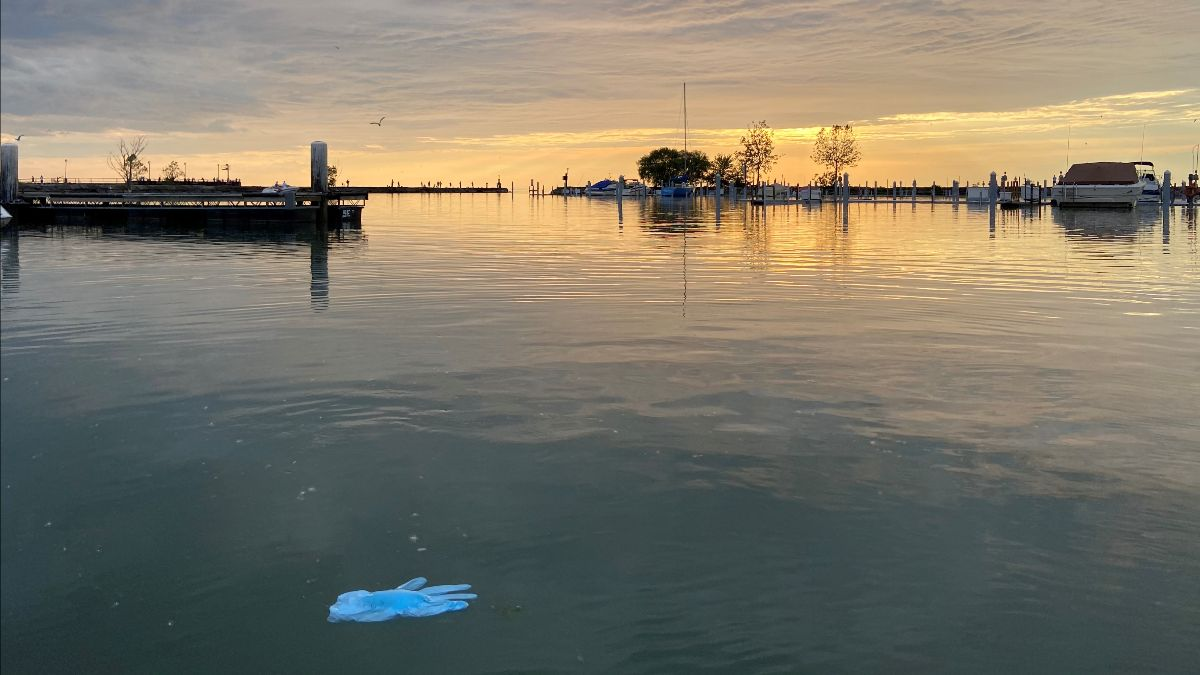 floating plastic glove in a marina at sunset