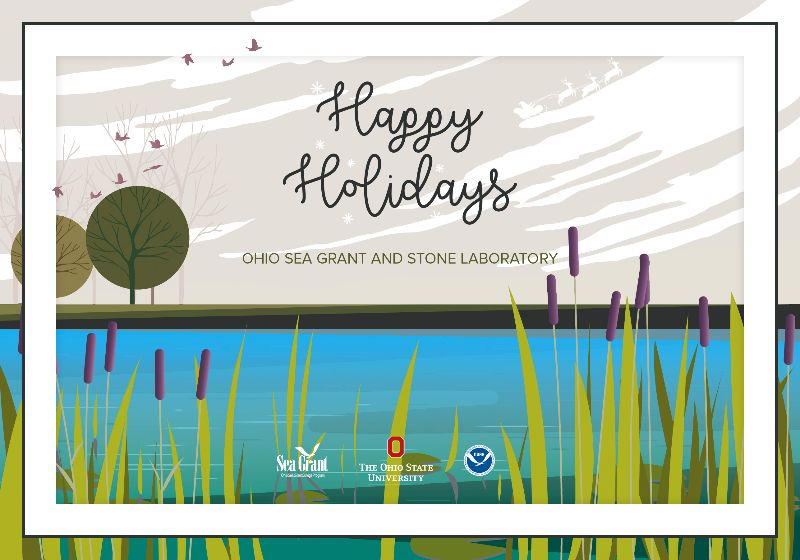 """A holiday card illustration saying """"Happy Holidays"""" and featuring a lake and cattails in the foreground and a winter sky with birds and a subtle Santa outline in the background"""