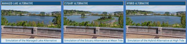 Simulations of the Managed Lake, Estuary, and Hybrid Alternatives