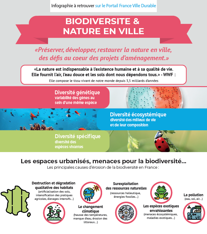 Biodiversité & nature en ville