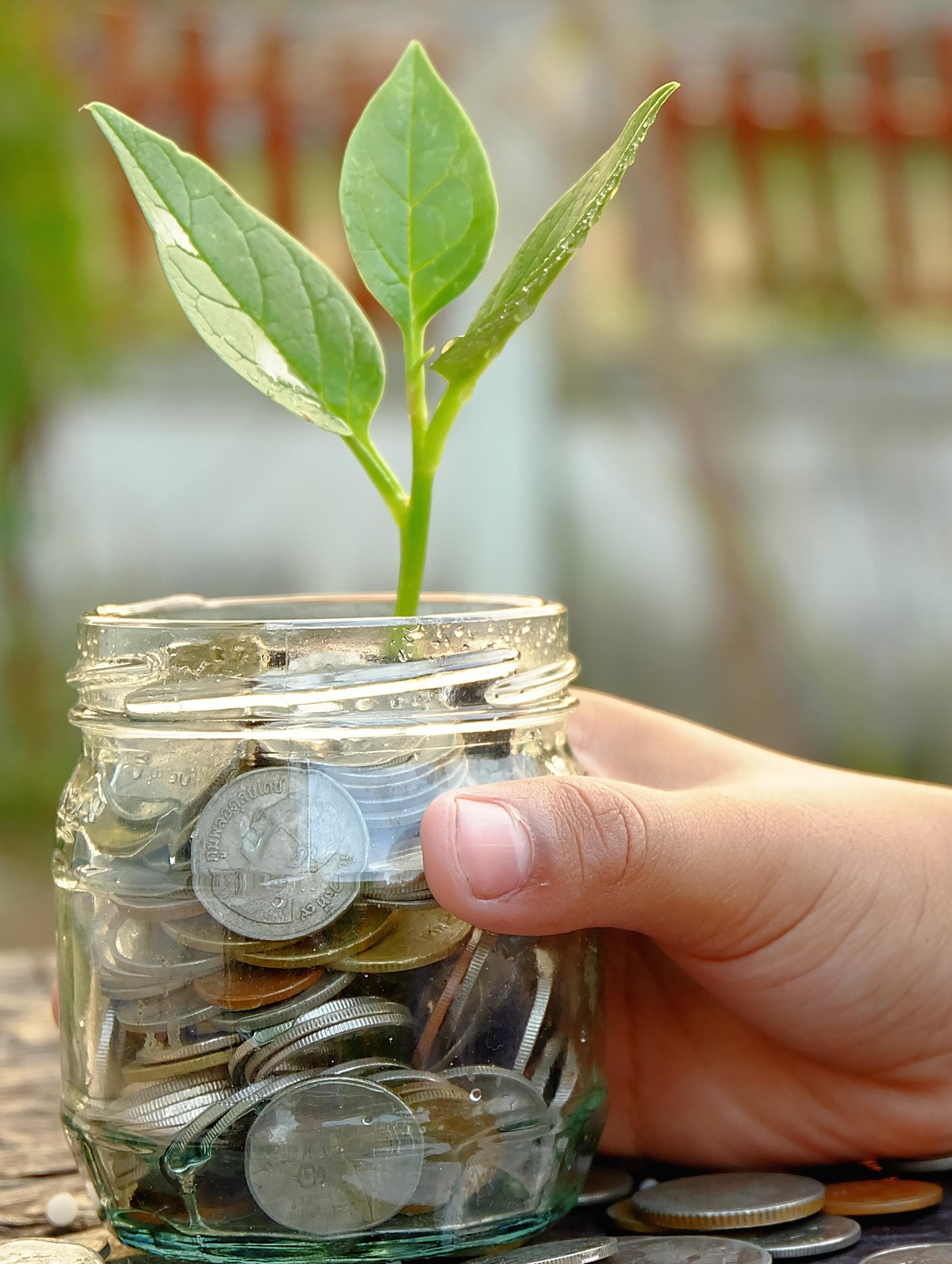 Growing Jar