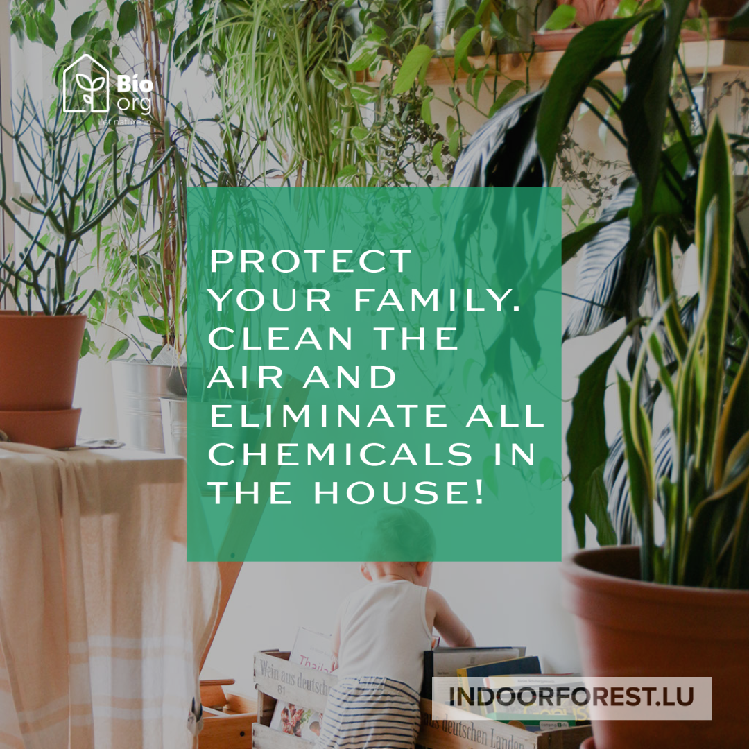 Protect your family with BioOrg
