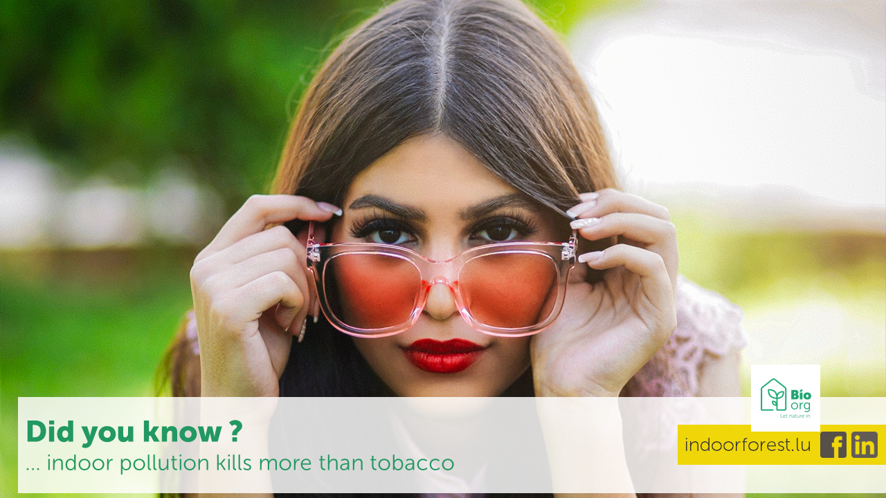 BioOrg Luxembourg : Fact. Indoor pollution kills more than tobacco