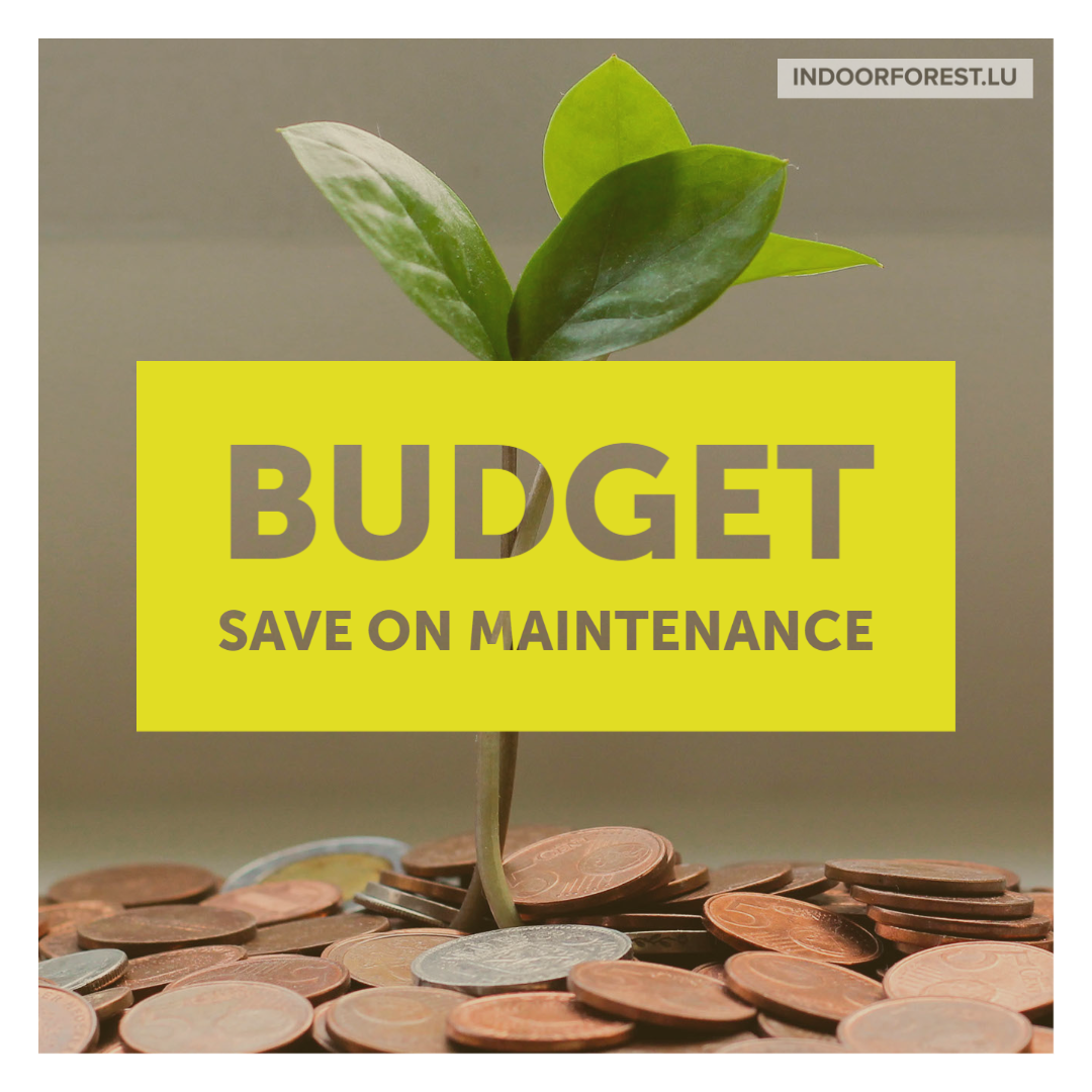 Optimize your maintenance budget with BioOrg