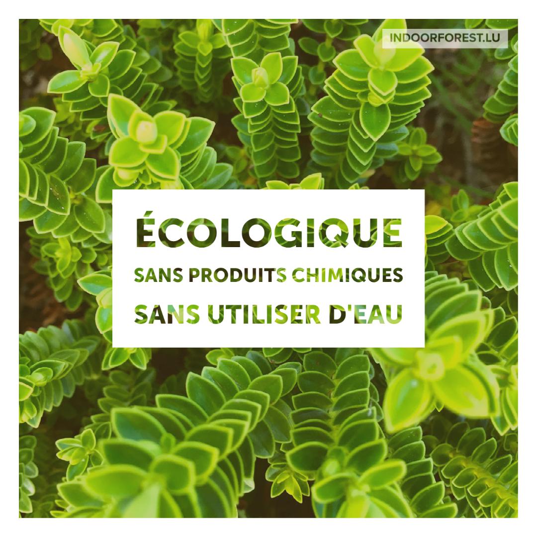 BioOrg vous aide à améliorer votre empreinte écologique