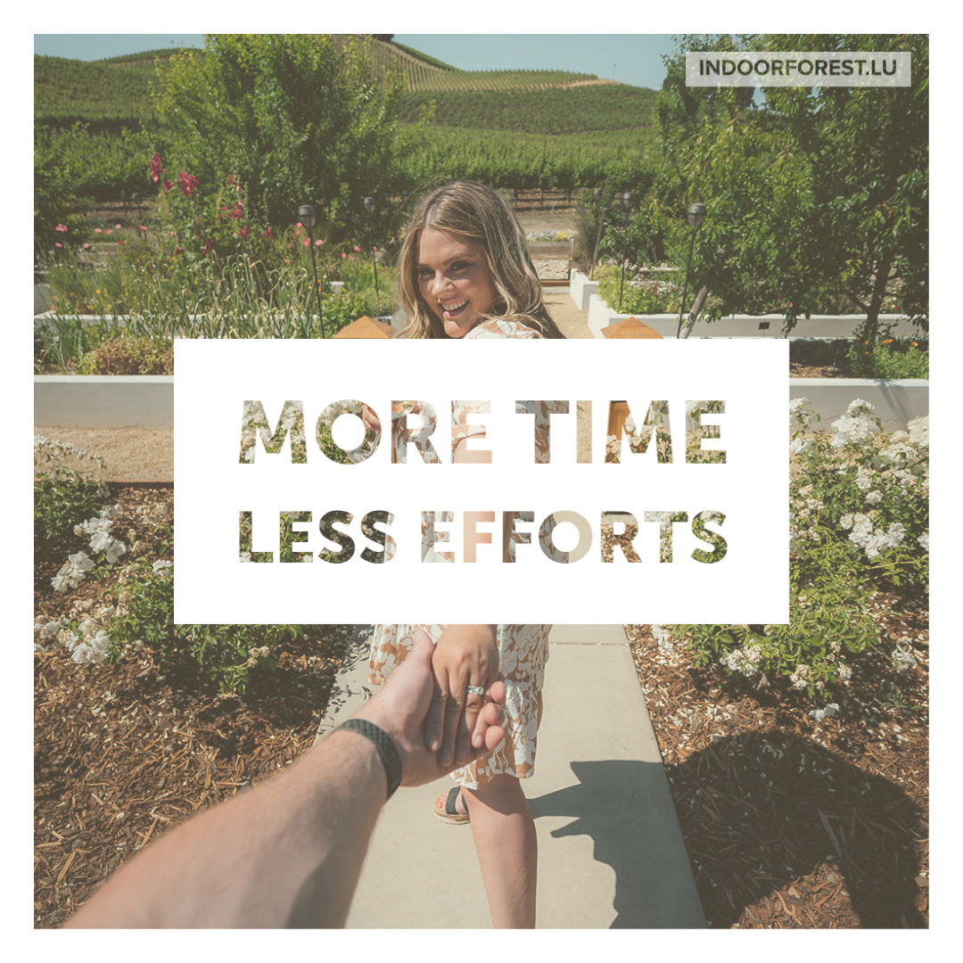 Save time, save your efforts with BioOrg