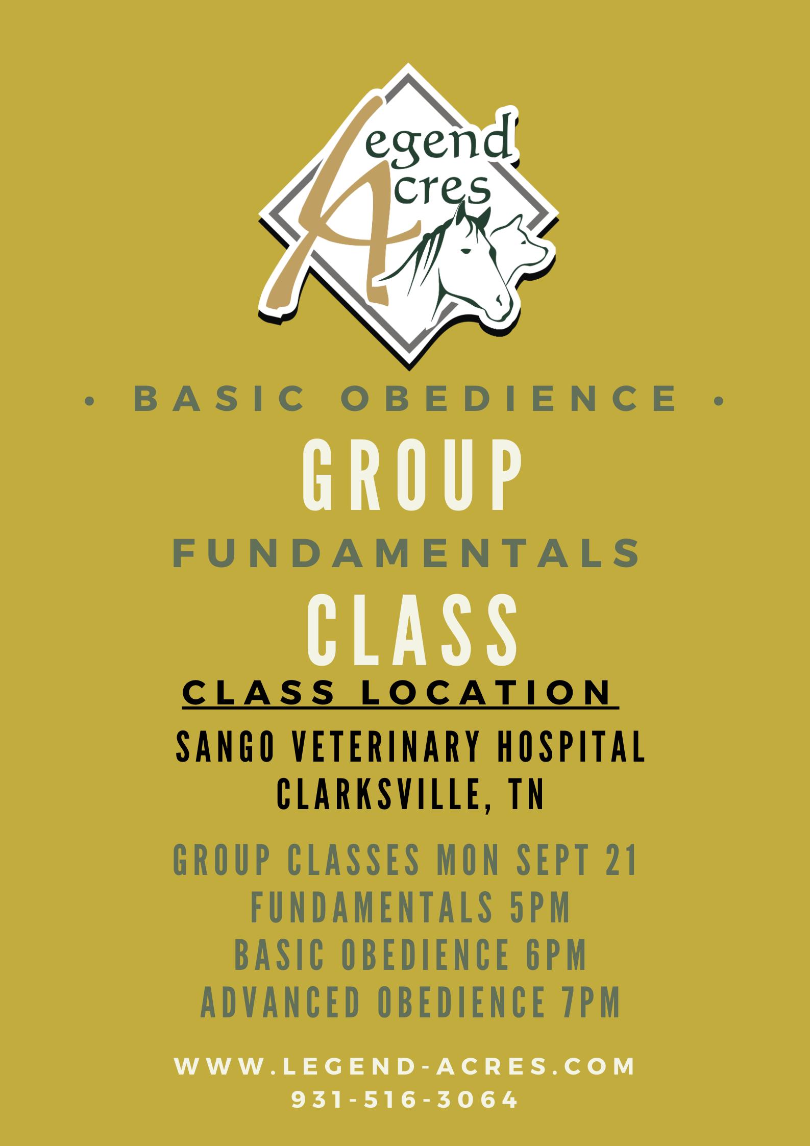 Group Classes Sango Vet Clarksville, TN
