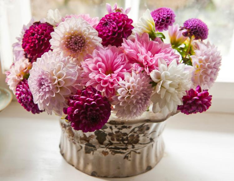 Pluk blomster