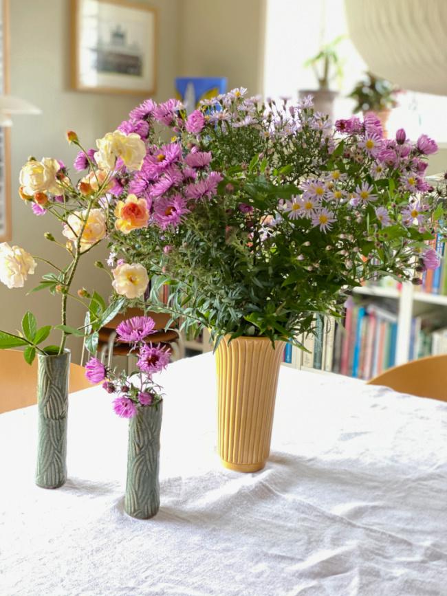 Asters i vasen