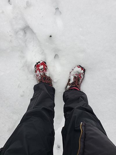 Gillian Gillies tromping through the snow somewhere near Caledon
