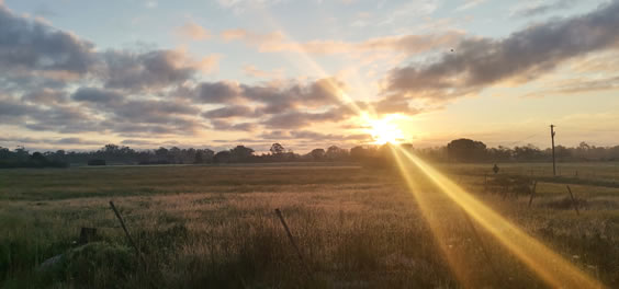 Sunset at Camphill