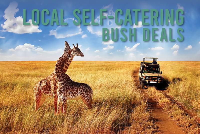 15335_TH-Bush-Self-Catering-Mailer_01.jpg