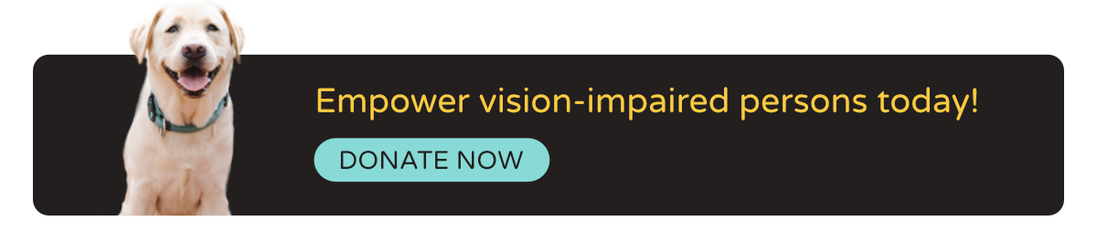 Empower vision-impaired persons today - Donate Now