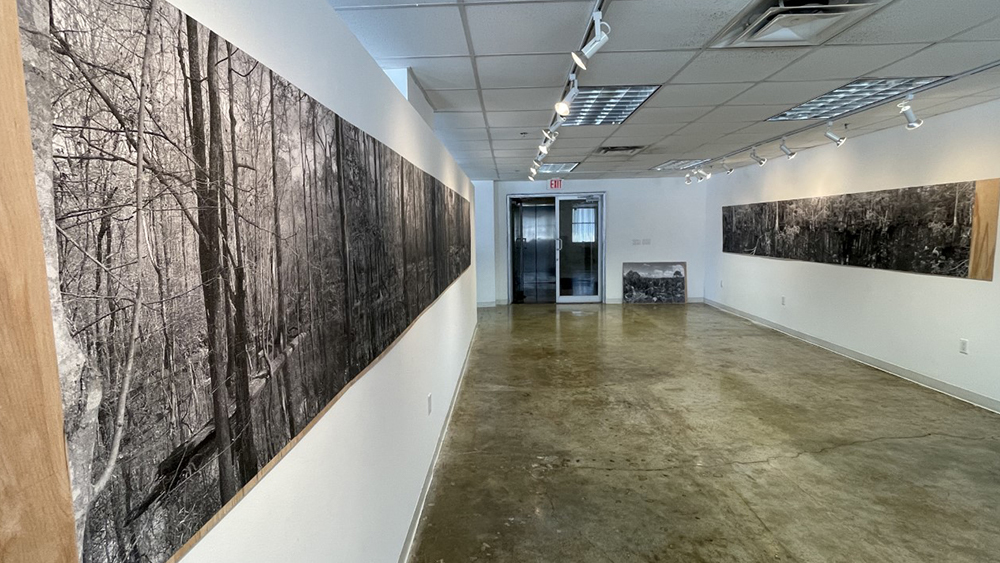 Image of the interior of the exhibition with the in long strips on the wall.
